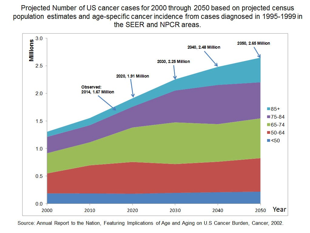 The NCI Director referred to this DCCPS graphic on aging and cancer in his testimony to the U.S. Senate on May 7, 2014