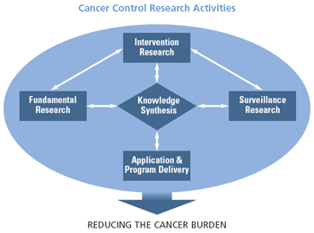 This diagram illustrates the synthesis of fundamental research, intervention research, and surveillance research with application and program delivery to reduce the burden of cancer.