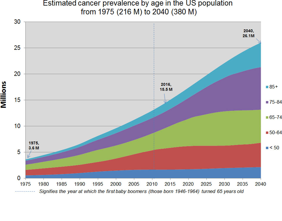 Estimated Cancer Prevalence by Age in the US Population from 1975 to 2040