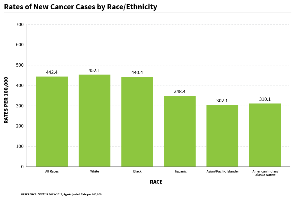 A bar chart of rates that shows new cancer cases by race/ethnicity.