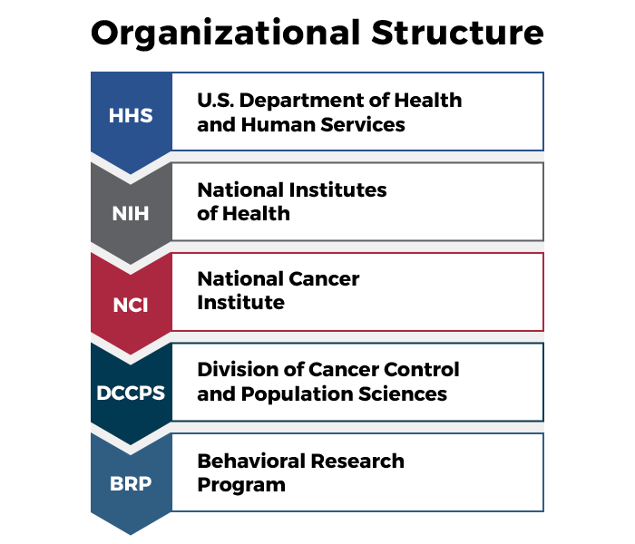 BRP Organizational Structure. Behavioral Research Program. Division of Cancer Control and Population Sciences. National Cancer Institute. National Institutes of Health. US Department of Health and Human Services