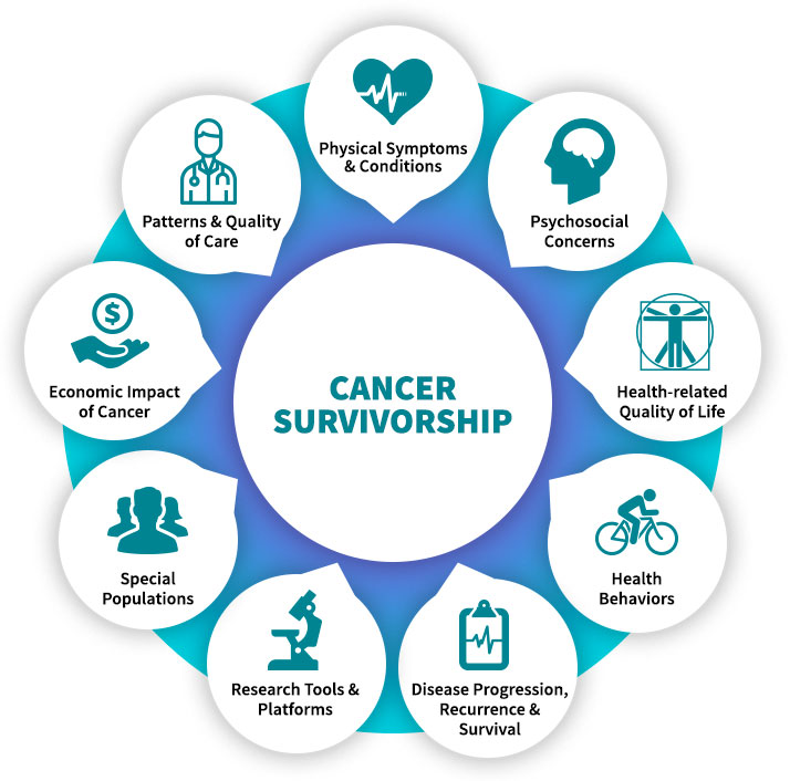 Cancer Survivorship Expertise Topic Wheel